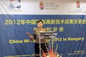 Gao Jian nagykövet asszony