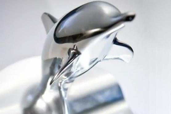 Delfin marás