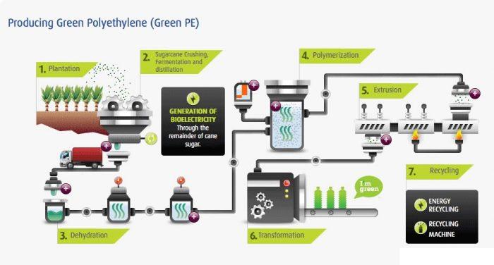 2. ábra: Bio-polietilén előállításának folyamata